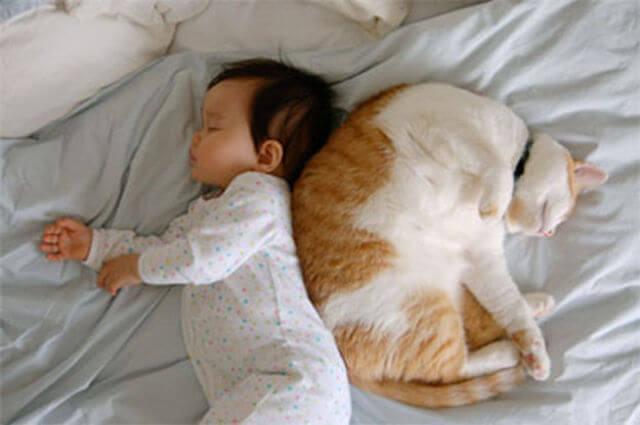 Mi bebé y mi gatito