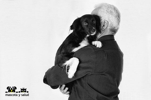 Los beneficios de tener una mascota implican a las personas en cualquier rango de edad