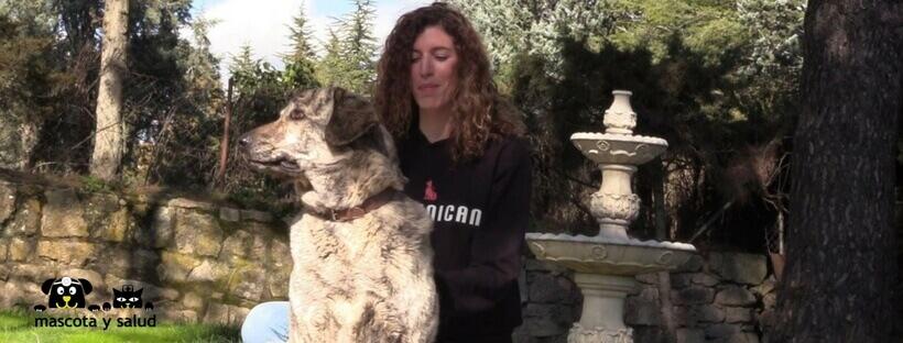 Educar perros con la adiestradora canina de Comunican
