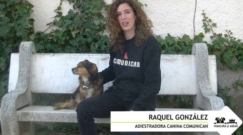 Raquel González, experta en adiestramiento de Comunican, junto a su perro Chispi.