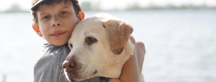 Convivir con una mascota es beneficioso para los niños