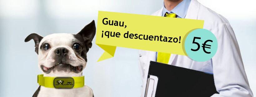 Mascota y salud.