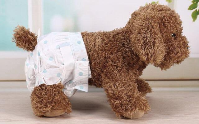 Perro con un pañal puesto.