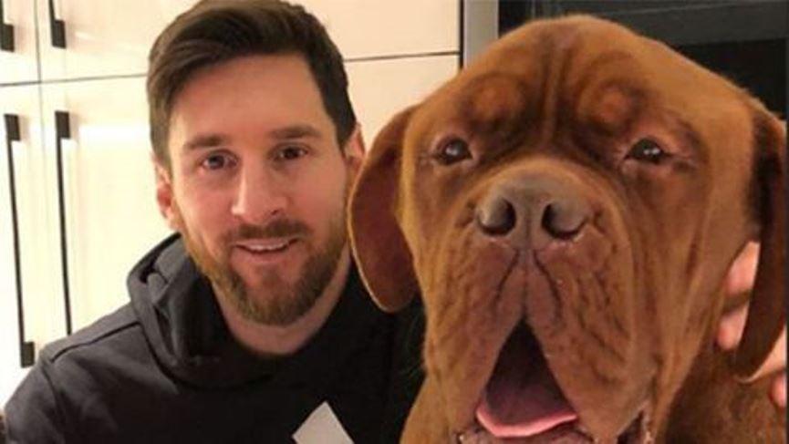Nombres Para Perros Más Populares De 2021 Mascota Y Salud
