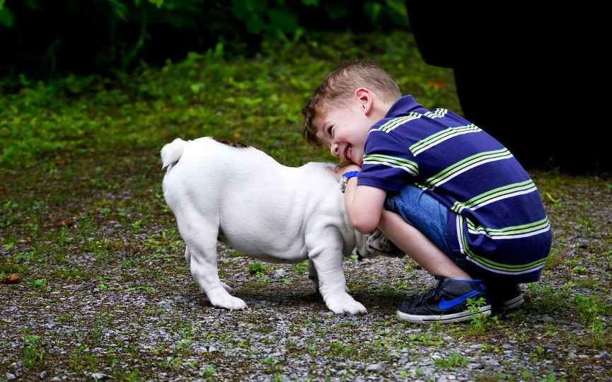 Chico juega con su perro