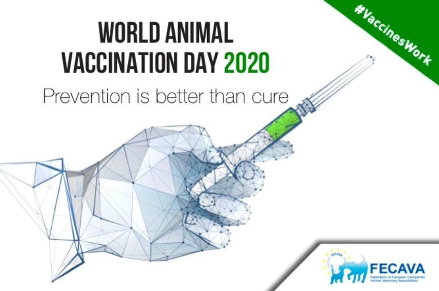 la importancia de la vacunación en mascotas