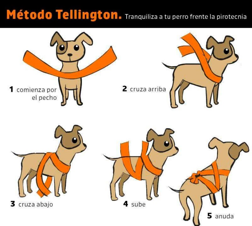 Vendaje Método Tellington Ttouch